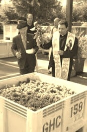 Grapes blessed at Grgich Hills