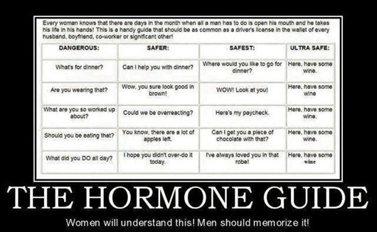 The Hormone Guide: Women Will Understand it, Men Should Memorize it!