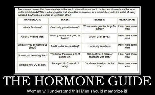 The Hormone Guide: Women Will Understand it, Men Should Memorize it!