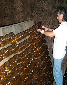 Riddling Champagne: Mullet's are optional.