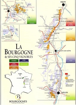 Burgundy Wine-Map