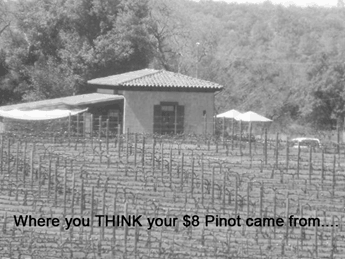 Small-Family-Owned-Winery