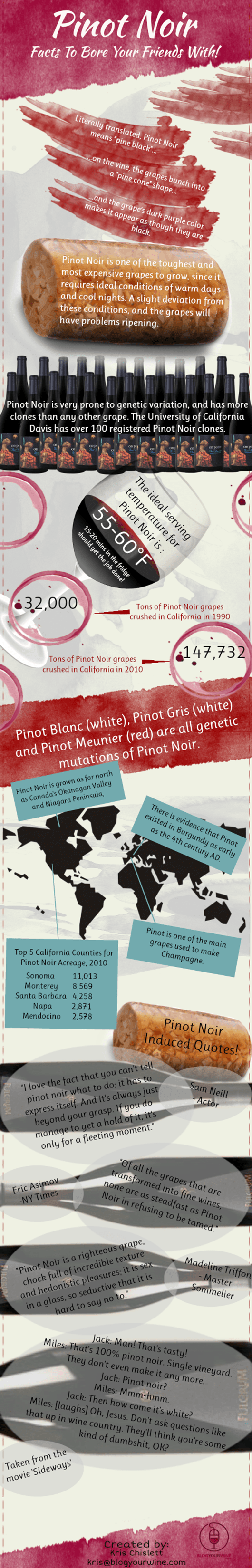 Pinot-Noir-Facts-Infographic
