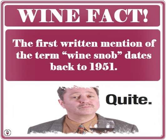 WINE FACT -Wine Snob