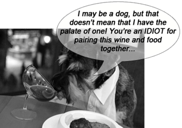 dog-wine-and-food-pairing