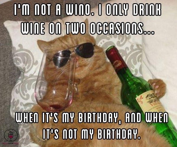 Funny Birthday Drinking Meme : Your wine